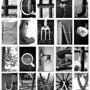 Professional Alphabet Photos