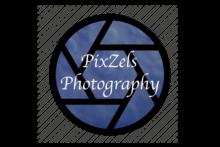 Pixzels